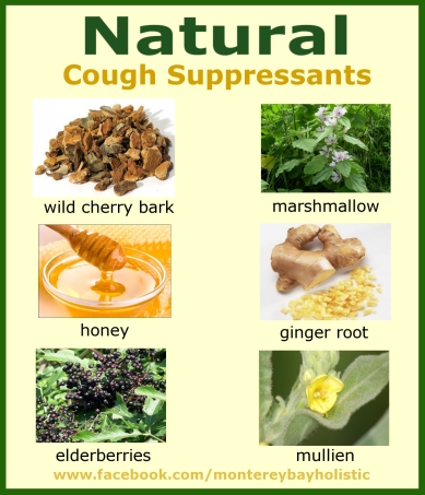 Natural Cough Suppressants