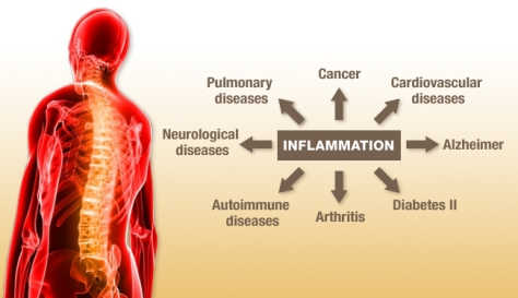 Inflammation and Chronic Disease