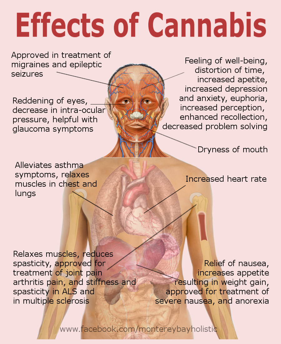 side effects marijuana | Monterey Bay Holistic Alliance