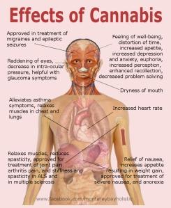 Medicinal Marijuana Effects