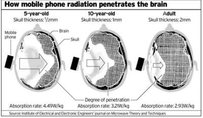 Mobile Phone Brain