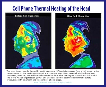 Mobile Phone Radiation