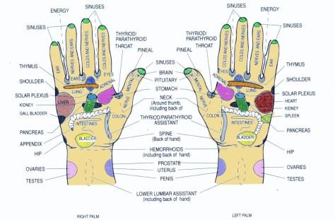 Hand Reflexology Meridians