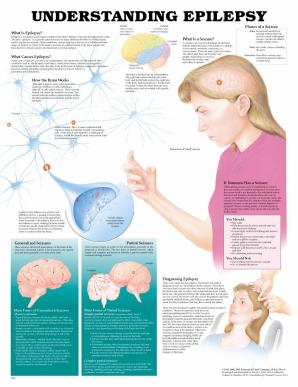 Understanding Epilepsy – Are Natural Treatments Effective