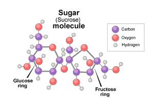 Sugar Sucrose