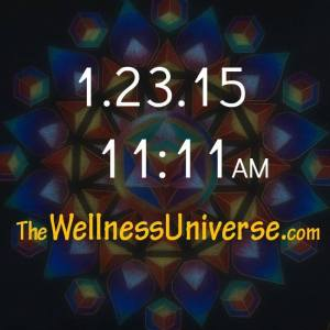 The Wellness Universe Launch
