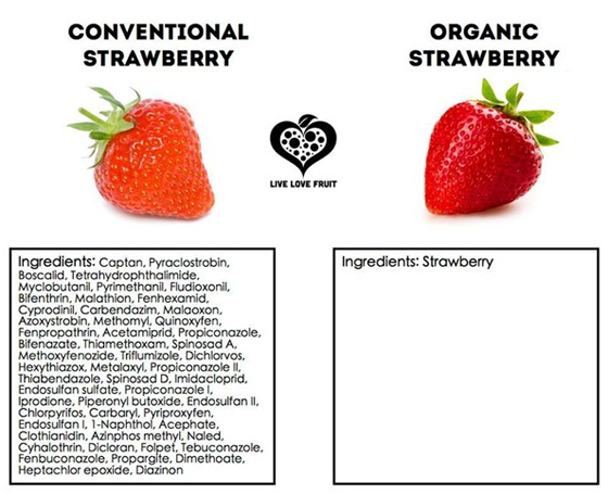organic strawberry graph