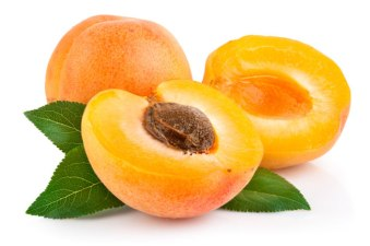 apricot_image