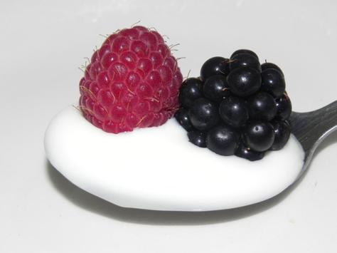 Kefir berries