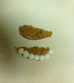 Peanut butter marshmallow