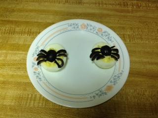 Spider eggs